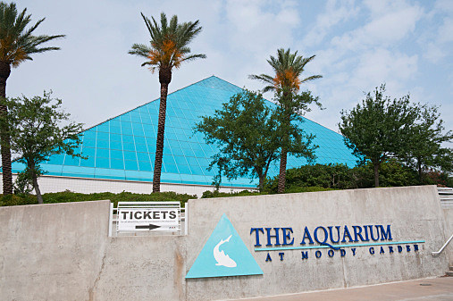 Moody Gardens Galveston-photo by Stephen Saks and Getty Images