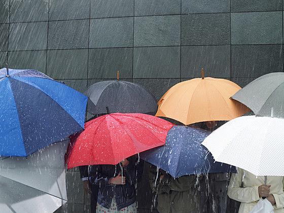 Group of people under umbrellas in rain